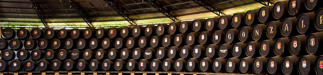 botti di vino Sherry nel grande patio della Bodegas Gonzales y Bias a Jerez de La Frontera, fotografate da Giorgio Giorgetti, personal chef Varese Como Milano Lombardia, su www.cucinodite.it.