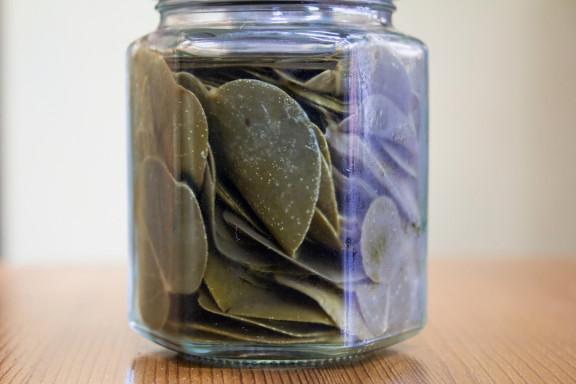 barattolo con foglie di cappero, acquistato a Santorini, Grecia, dal tuo personal chef Giorgio Giorgetti (www.cucinodite.it)