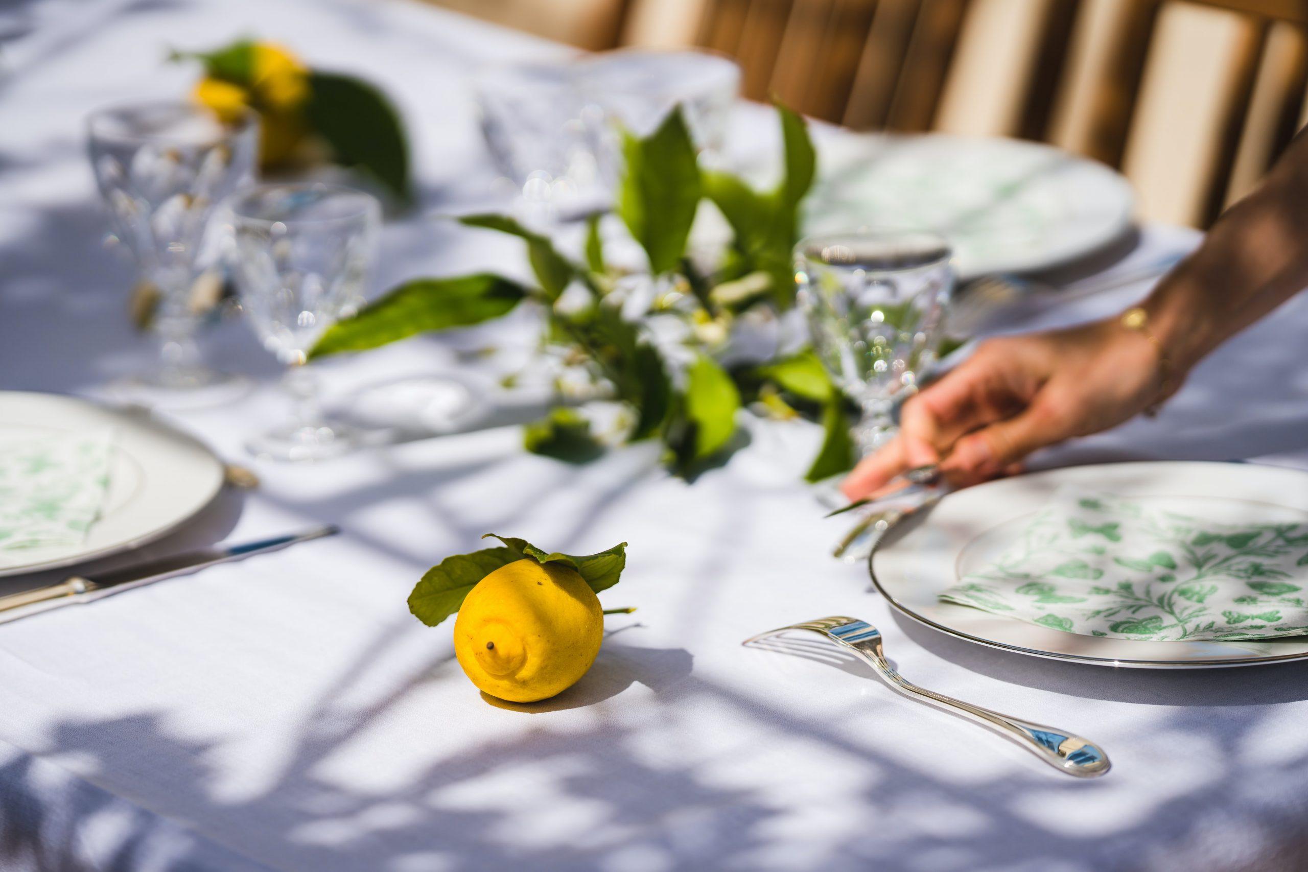 buffet elegante cena formale menù bistrot cucino di te cuoco a domicilio Varese, Como, Saronno, Legnano, Monza, Brianza, Canton Ticino, Svizzera